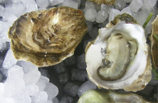 Ostras para Oyster Stout La Cibeles